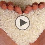 Dieta del riso: depurativa, dimagrante e proteica
