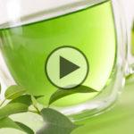 Il tè verde fa dimagrire, mantiene il cervello giovane e previene cancro e carie